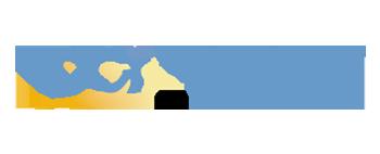 DCI-Logo